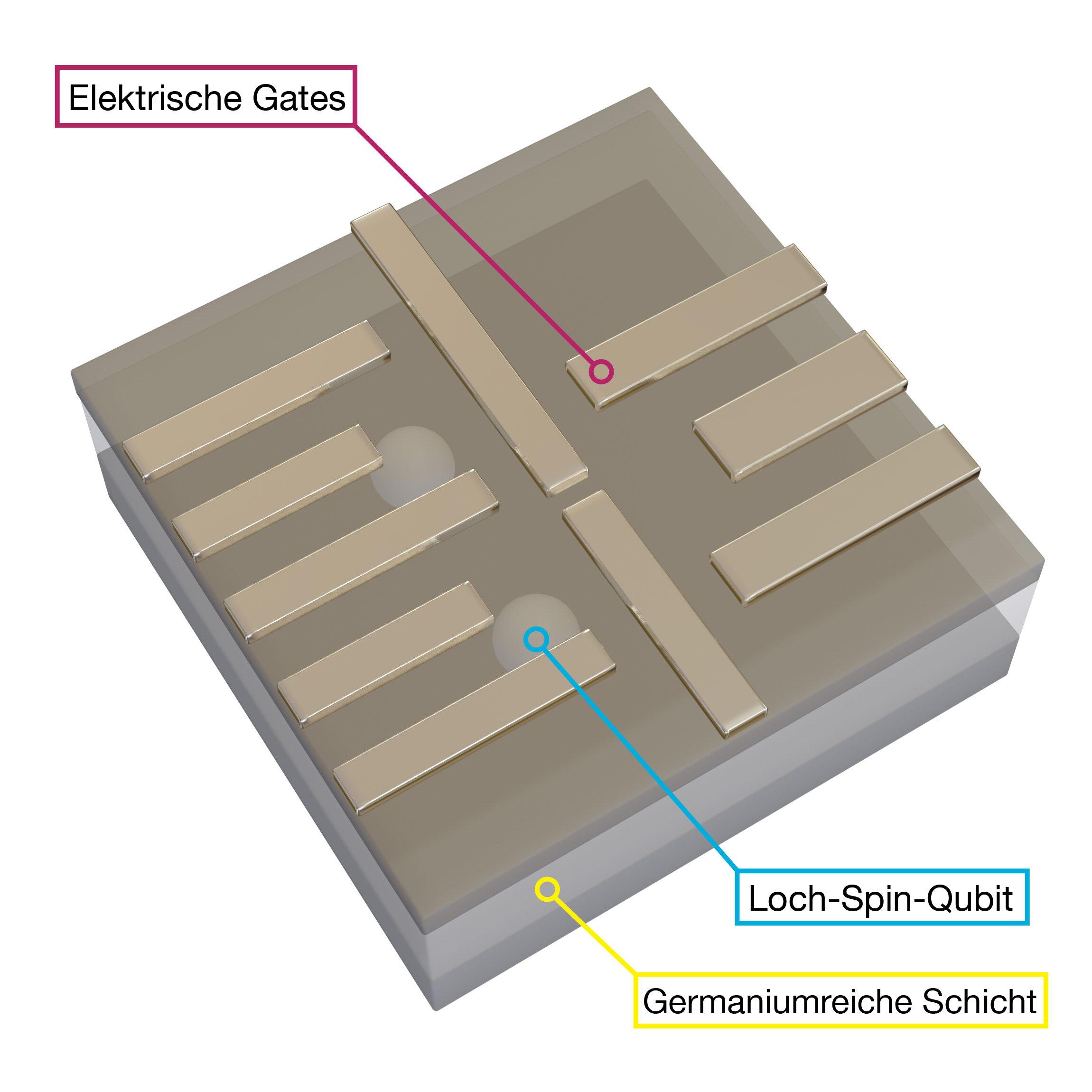 Quantum computing with holes