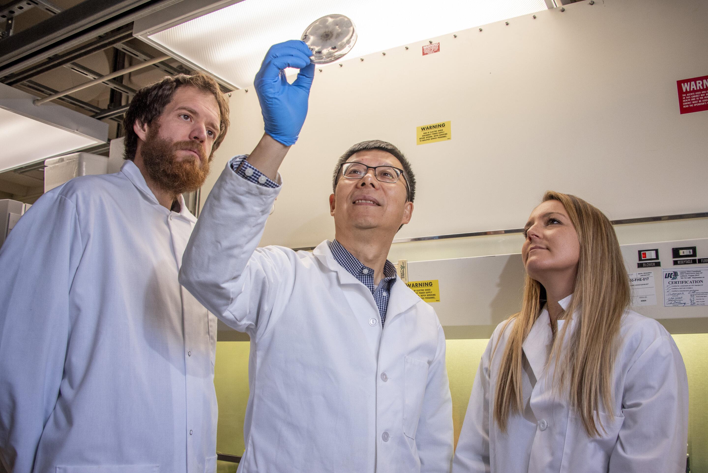 Researchers prepare to send fungi for a ride around the moon