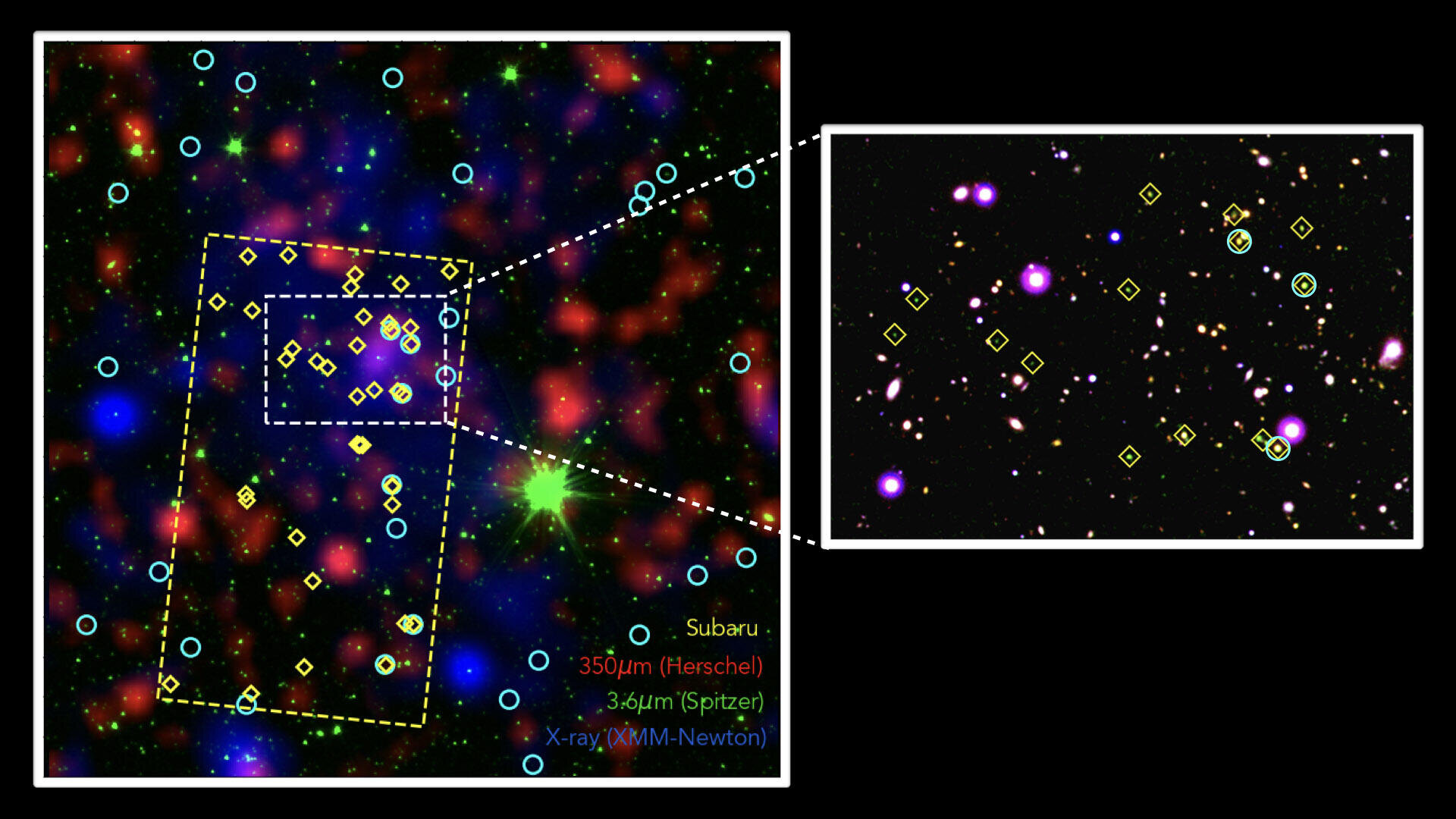 Astronomers discover a massive galaxy 'shipyard' in the distant universe