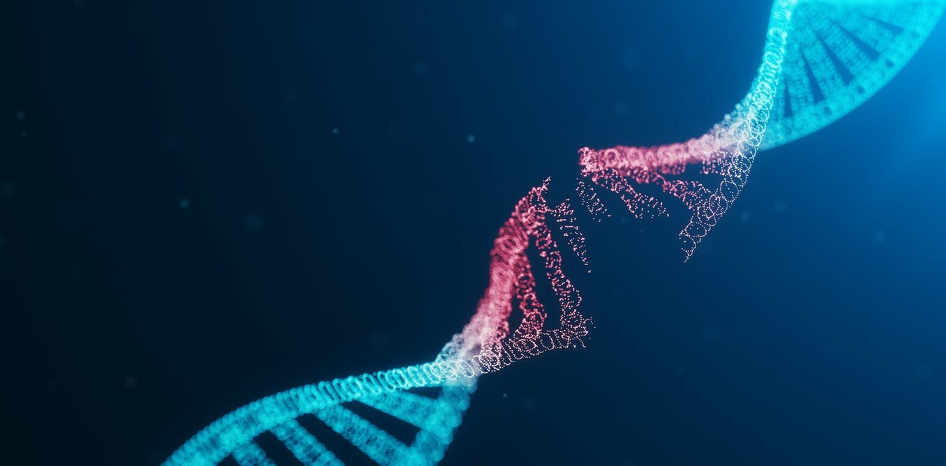 The human genome at 20: How biology's most-hyped breakthrough led to anticlimax and arrests - Phys.org