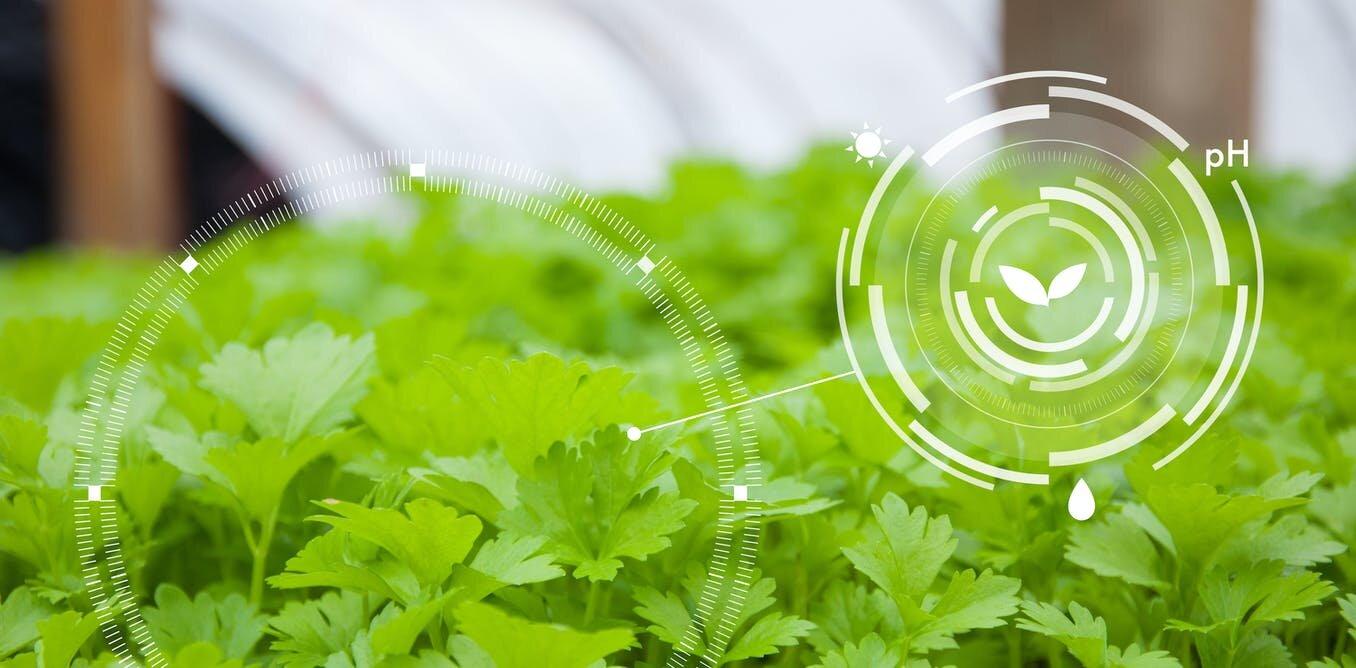 微小的纳米技术将对农业产生巨大的影响