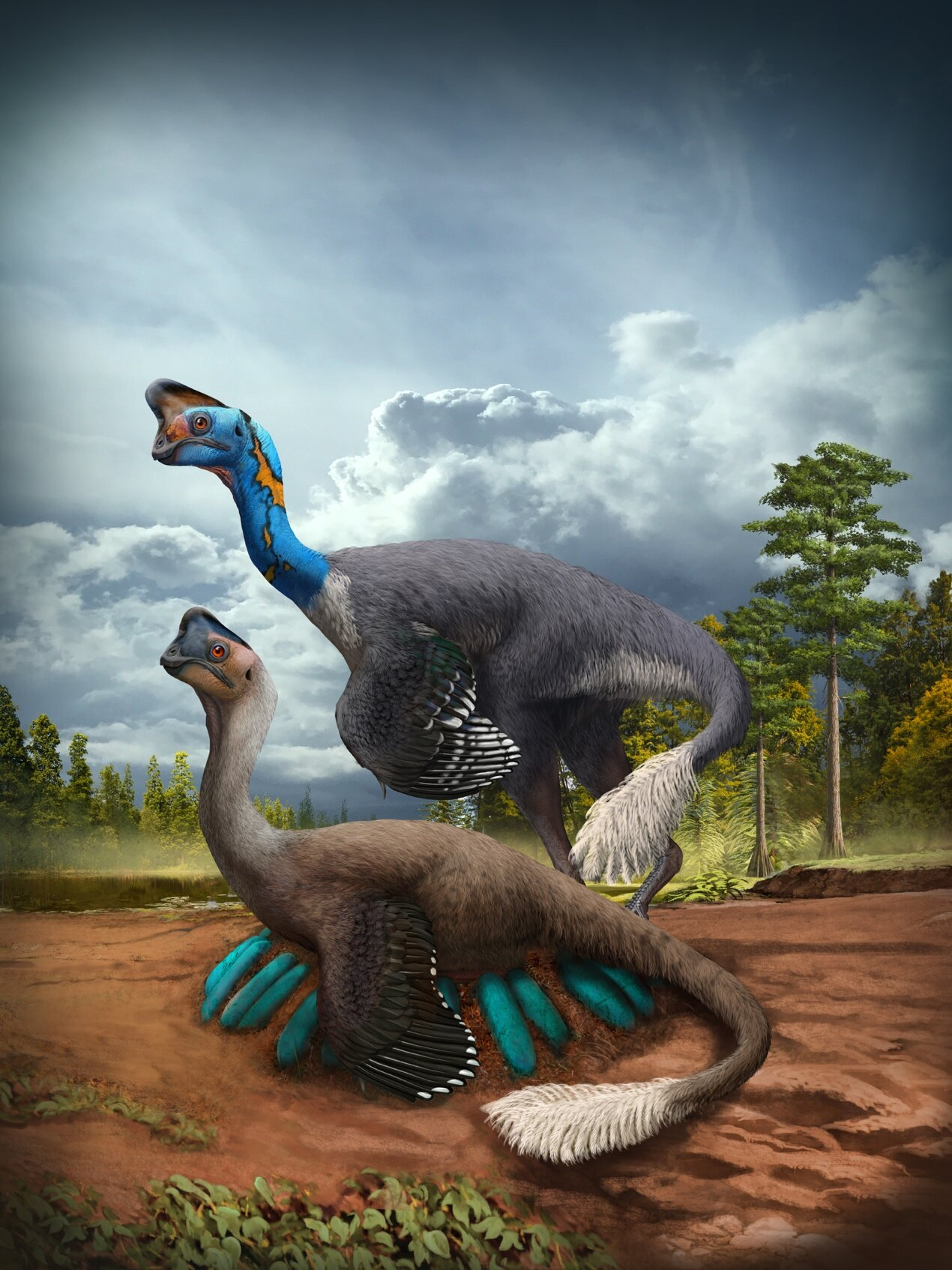 ANCIENT DINOSAURS cover image